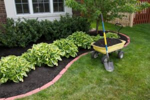 Mulch-Beds